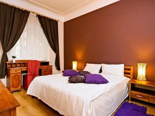 Beautiful Bohdana 3-be Apartment in Kiev Center - Barcelona vacation rentals