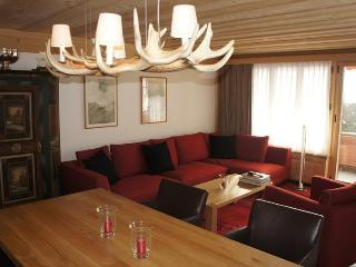 Les Silenes: New luxury 6 bed chalet apt. Gstaad - Gsteig vacation rentals