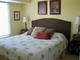 Turtlenest, 4 bed 3 bath home on N. Captiva Island - Captiva Island vacation rentals