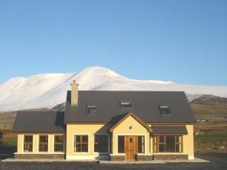 Bright, modern house on the Dingle Peninsula. Wifi - Dingle vacation rentals