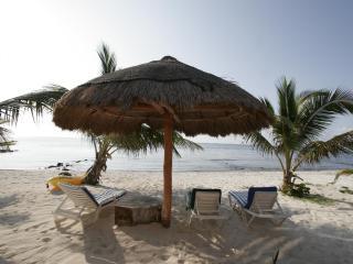 Casa Caracol Large Beachfront Villa, WiFi - Tulum vacation rentals