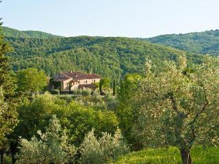 Villa Caccianello, private pool in Tuscany Italy - Pergine Valdarno vacation rentals