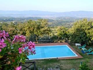 Villa Mariolina Grande - Image 1 - Pian di Sco - rentals
