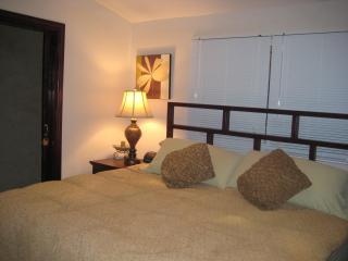 Casa Iguana luxury 2 bedroom mins. from the beach - Tamarindo vacation rentals