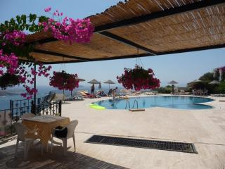 Detached 3 Bedroomed Villa in Gümüslük, Bodrum - Milas vacation rentals