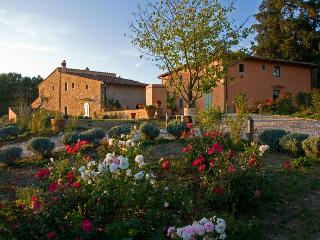 Nice Condo with A/C and Wireless Internet - San Casciano vacation rentals