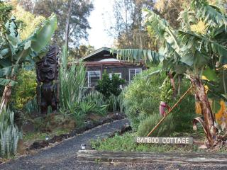 The Bamboo Cottage and Tiki Tomba - Hawi vacation rentals
