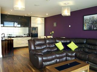 9/14 The Arc Situated in Belfast's Titanic Quarter - Belfast vacation rentals