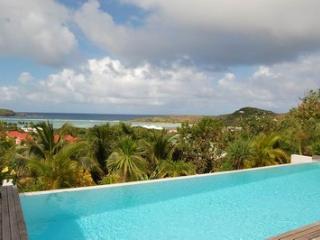 Blue Lagoon - Grand Cul-de-Sac vacation rentals