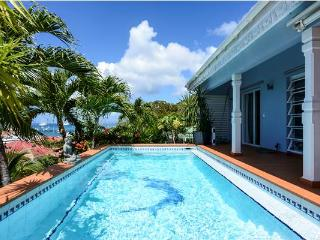 Lovely Villa with Internet Access and Dishwasher - Gustavia vacation rentals