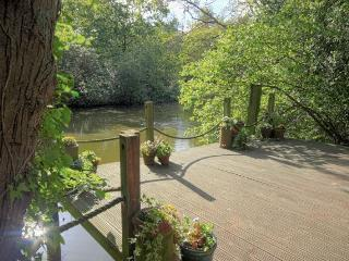 Nice 3 bedroom Cabin in New Forest - New Forest vacation rentals