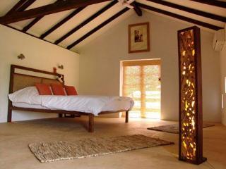1 bedroom Villa with Deck in Mandrem - Mandrem vacation rentals