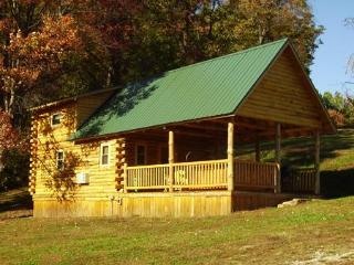The Old Red Cabin - Scio vacation rentals