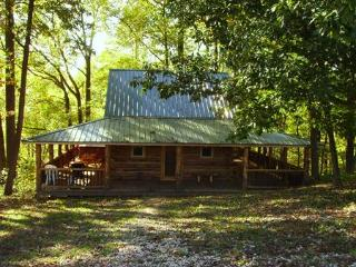 2 bedroom Cabin with Internet Access in Scio - Scio vacation rentals