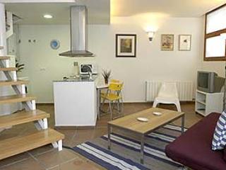 Plaza España Suites Dúplex - Barcelona Province vacation rentals
