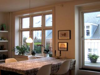 Copenhagen apartment in the heart of City - Copenhagen vacation rentals