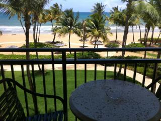 Beach front 2 bed/bath inside Wyndham Grand Resort Spa & Casino in PR- sleeps 11+/ across from the Rain forest! - Rio Grande vacation rentals
