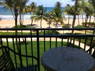 Beach front 2 bed/bath inside Wyndham Grand Resort - Rio Grande vacation rentals