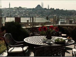 Newly renovated design apartment in Galata Beyoglu - Istanbul Province vacation rentals