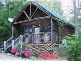 Mountain Memories - Image 1 - Gatlinburg - rentals