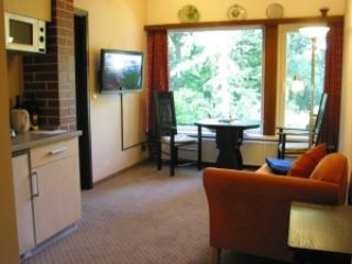 Vacation Apartment in Worpswede - 323 sqft, central, quiet (# 2331) - Worpswede vacation rentals