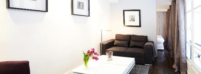 LUXURY ONE BEDROOM APARTMENT IN LE MARAIS - Image 1 - Paris - rentals