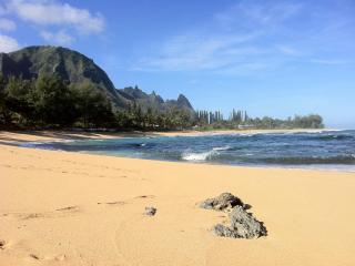 The Mermaid House - Steps Away from Pristine Beach - Hanalei vacation rentals