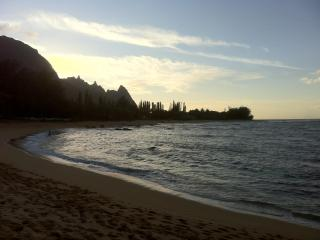 The Mermaid House - Steps Away from Pristine Beach - Haena vacation rentals