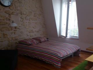 Mouffetard Studio in the Latin Quarter of Paris - Ile-de-France (Paris Region) vacation rentals
