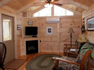 Romantic Log Cabin on Beautiful Lake Lure, Hot Tub - Lake Lure vacation rentals