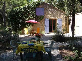 La Nouvelle Peyriere - Pool - Superb Property - Mazan vacation rentals
