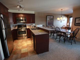 Mont-Tremblant condo with Mountain View and Spa - Mont Tremblant vacation rentals