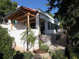 Villa Ida With Garden With Wonderful View Of Milna - Milna vacation rentals