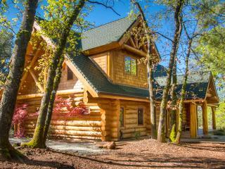 Lakehead Lake Shasta Log Lodge Vacation Home - Redding vacation rentals