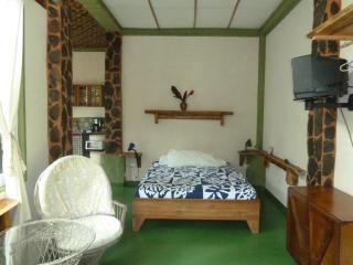 Nature Lover's studio apartment - Puntarenas vacation rentals