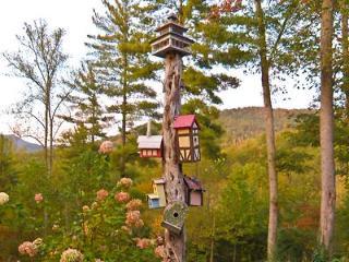 Hemlock Falls - Whimsical and Fun! - Franklin vacation rentals