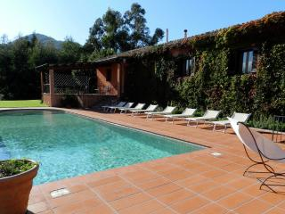VILLA ADRANON: luxury villa with pool, tennis cour - Palermo vacation rentals