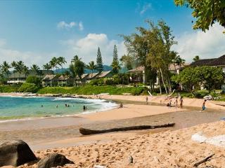 Fantastic Ocean Views and Steps to the Beach!!  Beautiful Hawaiiana Unit! - Kapaa vacation rentals