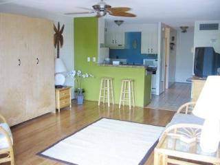 Beautiful Lahaina Shores Studio with Mountain View - Lahaina vacation rentals