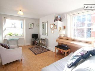 A charming apartment, moments from Oxford Street - London vacation rentals