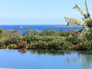 HOPE ESTATE... Gorgeous 4 BR luxury villa overlooking Orient Bay, absolutely one of the finest in this area! - Orient Bay vacation rentals