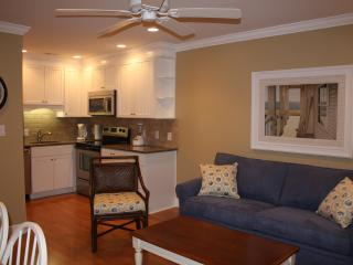 315 Breakers Oceanfront Condo Remodeled 2012 - Hilton Head vacation rentals