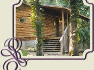 Woodland Violets - Eureka Springs vacation rentals