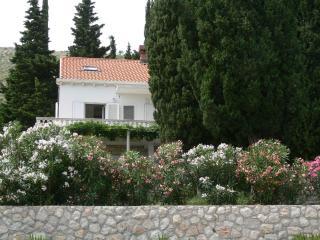 Apartments Villa Rosa #2 - Dubrovnik/Zaton - Zaton vacation rentals