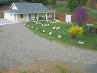 Yosemite Country Cottage~Spa~No Smokers/No Pets - Yosemite National Park vacation rentals