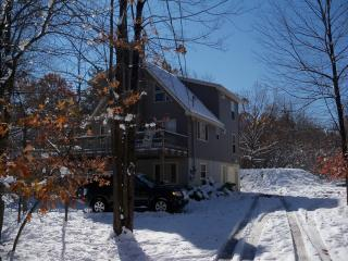 Newer Pocono Mountain Chalet - WIFI - Albrightsville vacation rentals