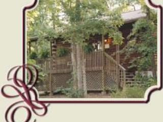 Country Rose - Eureka Springs vacation rentals