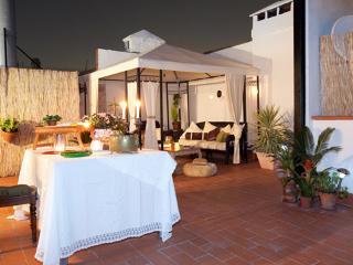 Sweet Born *** Cocoon Cosy Terrace (BARCELONA) - Catalonia vacation rentals