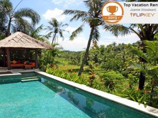 Villa Abadi in the heart of Bali's rice terraces - Canggu vacation rentals