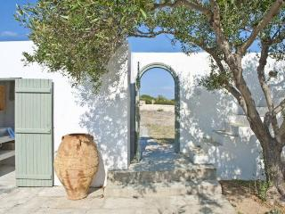 5 bedroom Charatcter Beach Villa in Paros - Antiparos Town vacation rentals